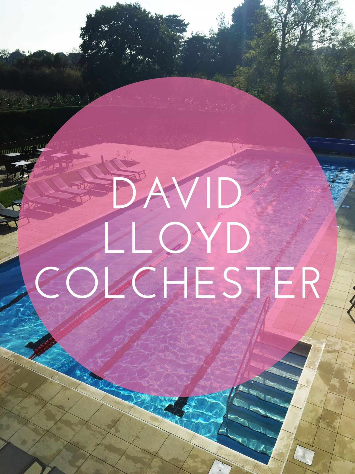 David LLoyd Colchester